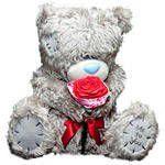Мишка Тедди - С розой