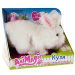 Кузя — мой забавный кролик