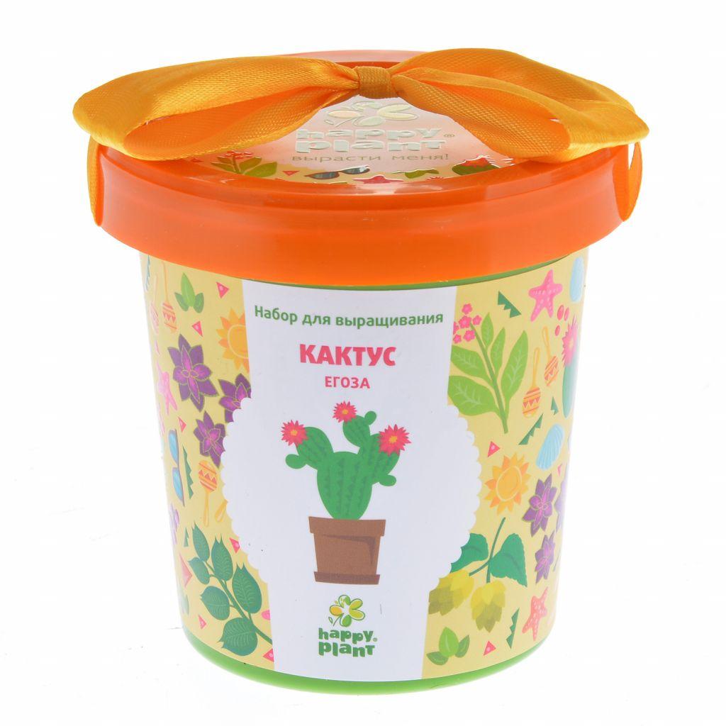 Happy Plant Кактус Егоза